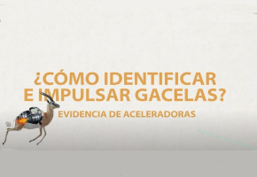 VideoGacelas_ComoIdentificarEImpulsar